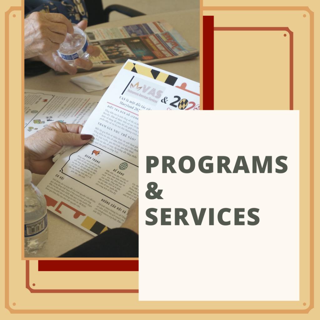 Vietnamese American Services Programs