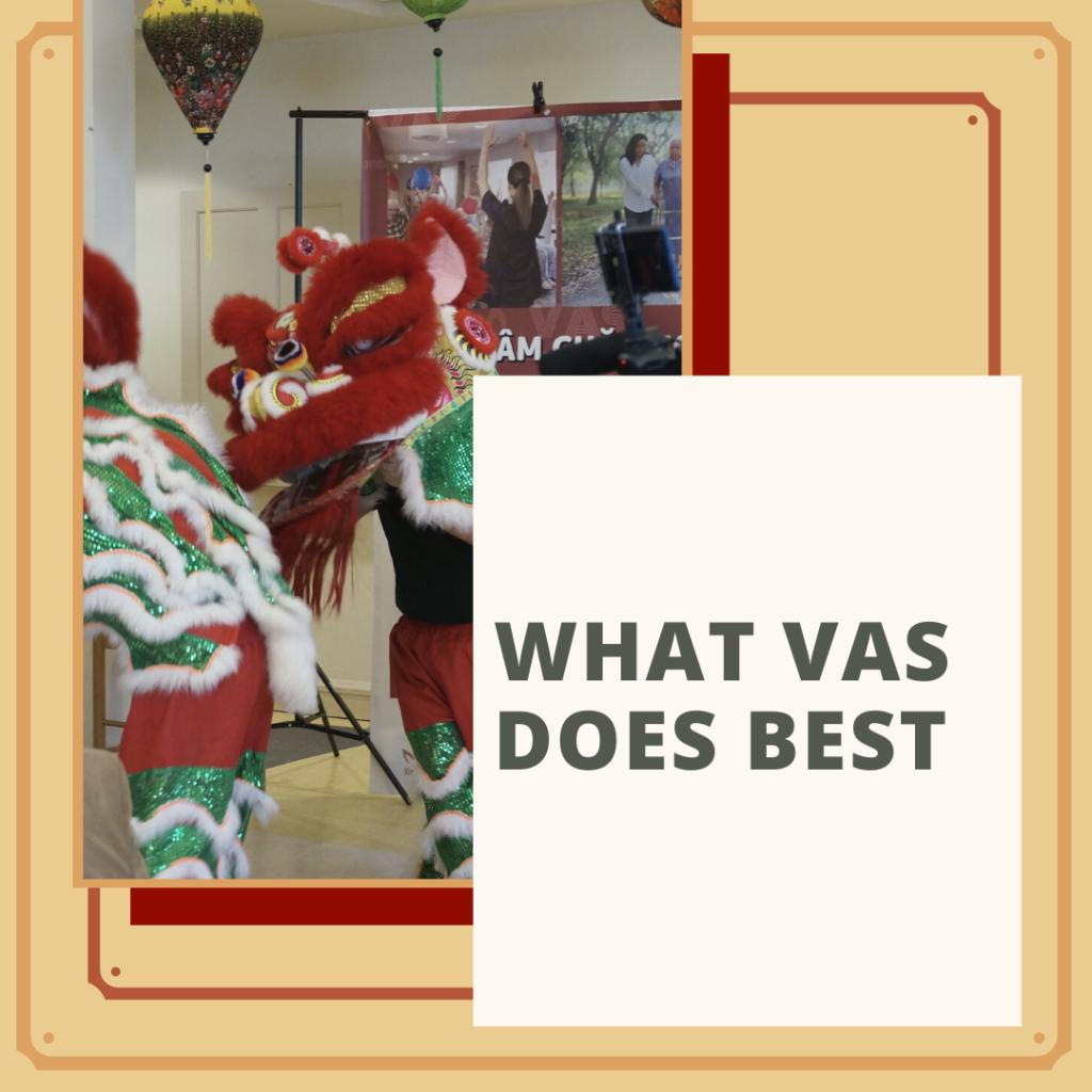 What Vietnamese American Services (VAS) Does Best